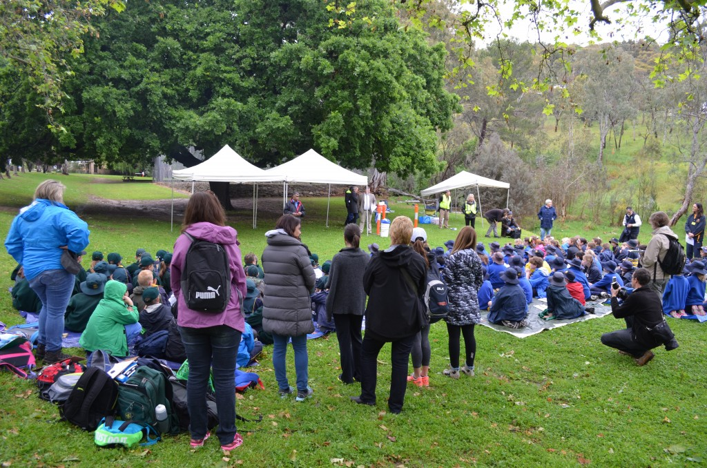 News and Events Page | Brownhill Creek Association