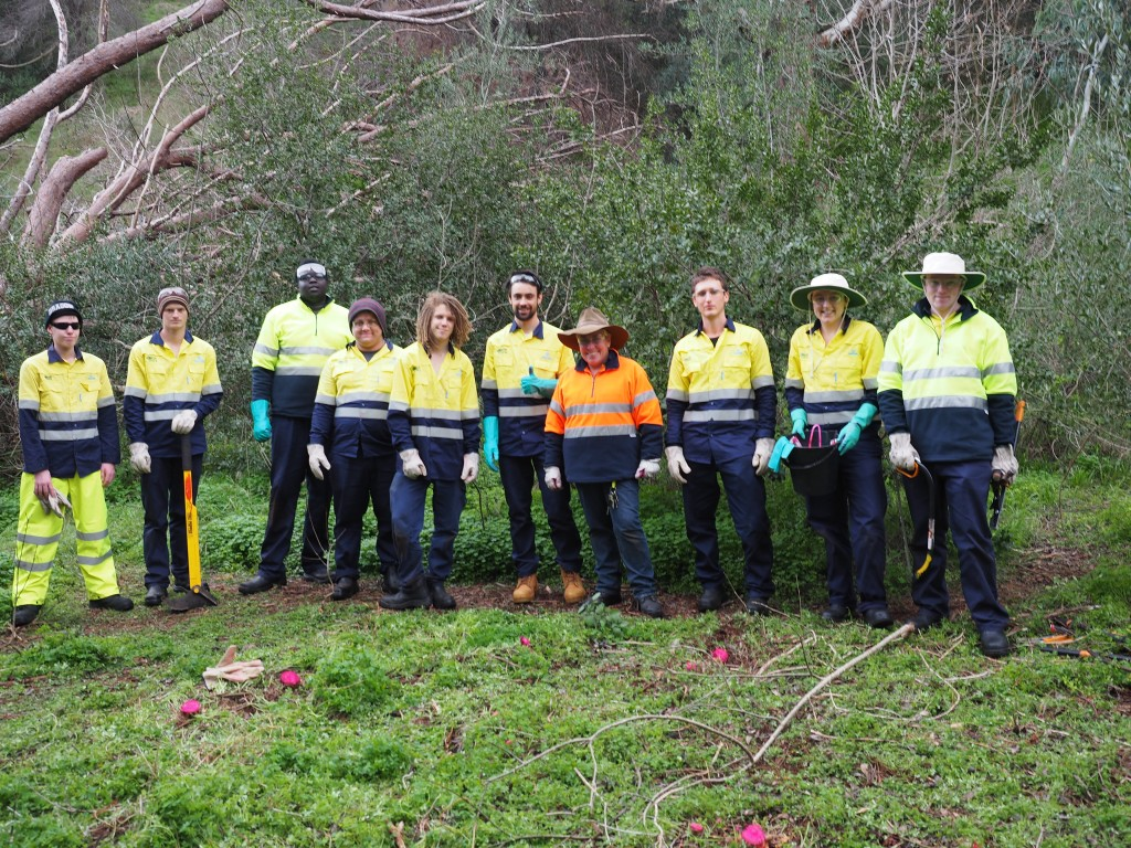 Brownhill Creek Green Army Project
